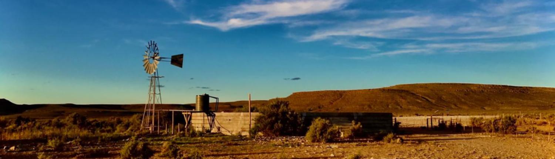 Sutherlamb Fresh Meat Produce - Karoo Lamb - South Africa